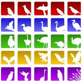 Twenty Five Bird Icons Stock Photos