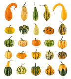 Twenty-five different ornamental pumpkins. High resolution set of twenty-five diverse colorful pumpkins on white background stock photo