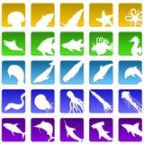 Twenty five sealife icons Stock Photography
