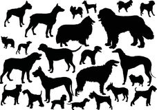 Twenty four dog silhouettes Stock Photography