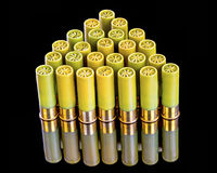 Twenty gauge shotgun shells in a pattern Royalty Free Stock Image