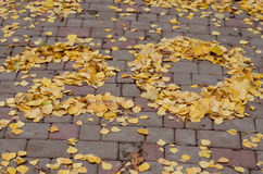 Twenty. Leaves laid out the number 20 on the ground stock photos