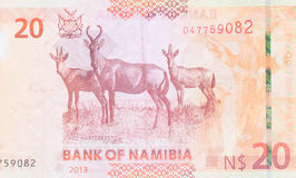 Twenty Namibian Dollars. Part of a complete banknote Stock Image