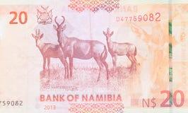 Twenty Namibian Dollars Stock Image