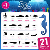 Twenty one Sea animal silhouettes part.1. Set of 21 Silhouettes representing different Sea Animal part.1 Stock Photography