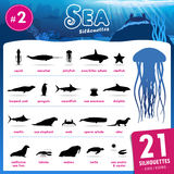 Twenty one Sea animal silhouettes part.2. Set of 21 Silhouettes representing different Sea Animal part.2 Stock Photo