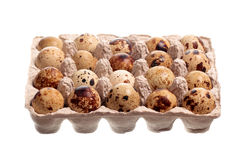 Twenty quail eggs in the package. Isolated on white background Stock Photos