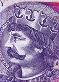 Twenty zloty close up Royalty Free Stock Image