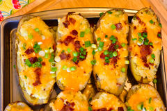 Twice baked potatoes. Fresh delicious with bacon and green onion Royalty Free Stock Image