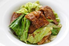 Twice cooked pork , chinese food. Twice cooked pork with cabbage , chinese food Stock Images