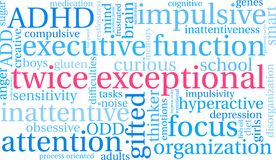 Twice Exceptional Word Cloud Royalty Free Stock Image