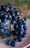 Twig of blue grapes in a glass on a plate, raw food Royalty Free Stock Photos