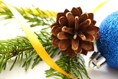 Twig of fir and cone Royalty Free Stock Images