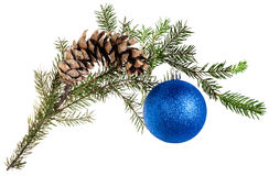 Twig of fir tree with cone and blue ball on white Royalty Free Stock Photo