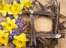 Twig frame with daffodil and hyacinth Stock Image