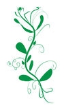 Twig with leaves abstract vector illustration Royalty Free Stock Image