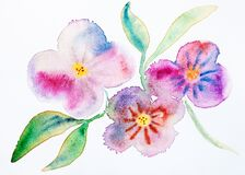 Twig with pink flowers hand-drawn by watercolours
