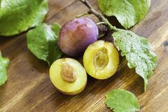 Twig with plums Royalty Free Stock Images