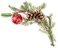 Twig spruce tree with cone and red ball on white Stock Photos