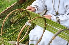 Twig wicker. Traditional craftsmanship - a woman making a twig basket in an old-fashioned way Stock Image