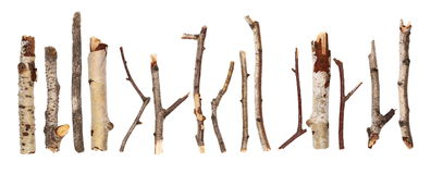 Twigs, big set macro dry branches birch isolated on white background. With clipping path Royalty Free Stock Photo