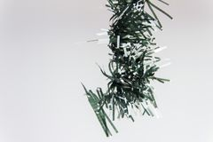 Twigs of a christmas tree royalty free stock photo