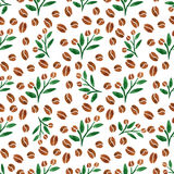 Twigs of coffee. Watercolor seamless pattern with coffee branch with leaves. Vector illustration. Stock Images