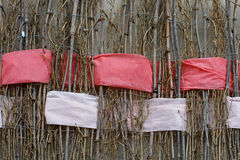 Twigs with interwoven wide red and white ribbons of felt. Background of twigs with interwoven wide red and white ribbons of felt Royalty Free Stock Image