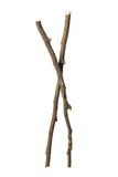 Twigs Stock Images