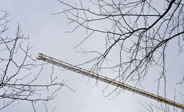 Twigs without leaves and a crane jib Stock Photos