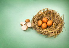 Twigs nest with brown chicken eggs with broken and empty shell e Stock Photo