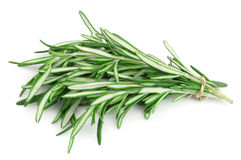 Twigs of rosemary. On white Royalty Free Stock Photo