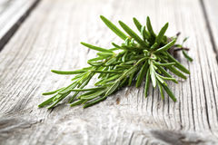 Twigs of rosemary. On wooden texture Royalty Free Stock Images