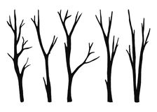 Twigs from the tree are dry isolated. vector black silhouettes. illustration on white background Stock Photography