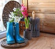 Twijg van bloeiende kers in een rubber knie-laars. royalty-vrije stock foto