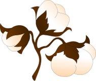 Twijg van katoen met drie tot bloei komende knoppen stock illustratie