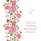Twijgen van roze rozen met bladeren Witte achtergrond vector illustratie