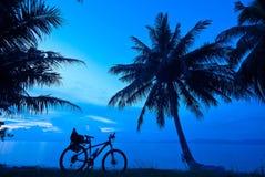 Twilght bike coconut tree Stock Photos