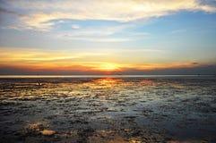 Twilight взгляд морского побережья заболоченного места стоковая фотография