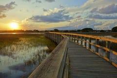 Twilight небеса над болотами Стоковые Изображения RF