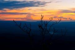 Twilight свет на горе в Таиланде Стоковая Фотография RF