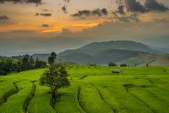 Twilight at Ban Pa Bong Piang Stock Photography