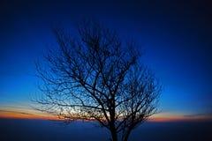 Twilight blue sky. Light beautiful scene stock photo