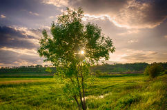 In the twilight of the day Royalty Free Stock Photo