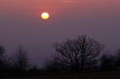 Twilight Himmel Stockfotografie