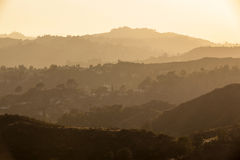 Twilight in Hollywood forest, Los Angeles Royalty Free Stock Photo