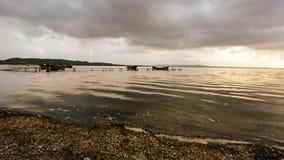 Twilight of the lagoon. stock footage