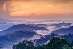 Twilight landscape in rain forest, HDR process. Royalty Free Stock Photography