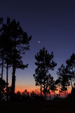 Twilight. Last light of day at camp Stock Images