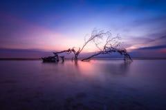 Twilight. Low tide gili trawangan lombok island stock photography